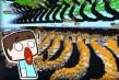 我的世界:MC地形最震撼的种子,出现的原因至今未解