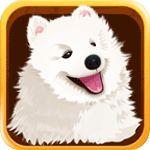 宠物主义安卓版  V1.3.5 安卓版