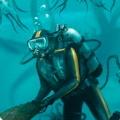 深海迷航无限资源版