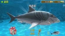 【大海】饥饿鲨世界/进化/饥饿龙