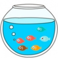 你好小鱼V1.0.31 安卓版
