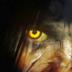 精神病院6:恶魔之子
