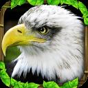 老鹰模拟器2破解版