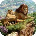 动物园之星免费版 1.0