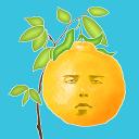 脸树1.0.5